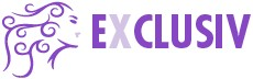 exclusiv-online-logo
